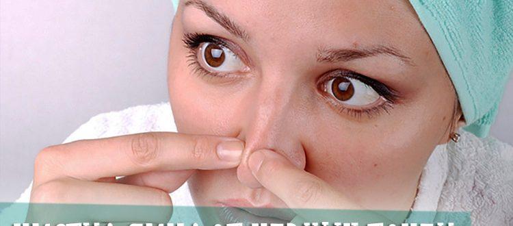 Чистка лица от черных точек в салоне - советы профессионалов