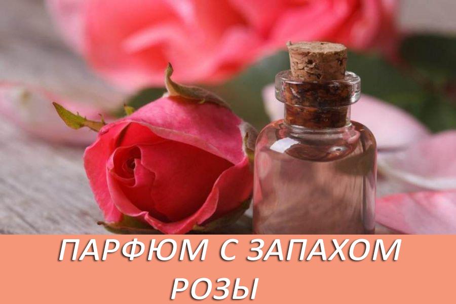Лучшие духи с запахом розы